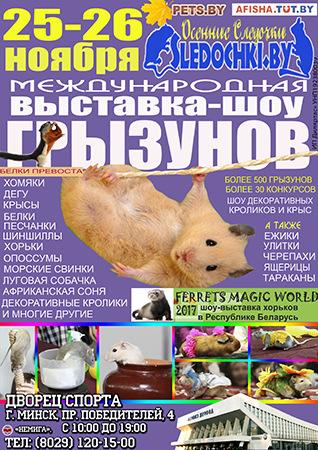 3. Международная выставка грызунов, хорьков и зайцеобразных «Осенние следочки-2017»