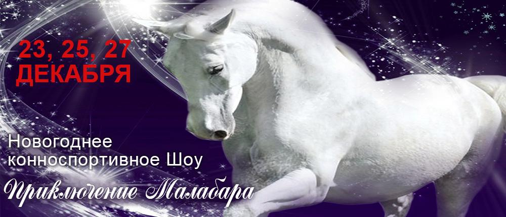 3. Новогоднее конноспортивное шоу «Приключения Малабара»-1