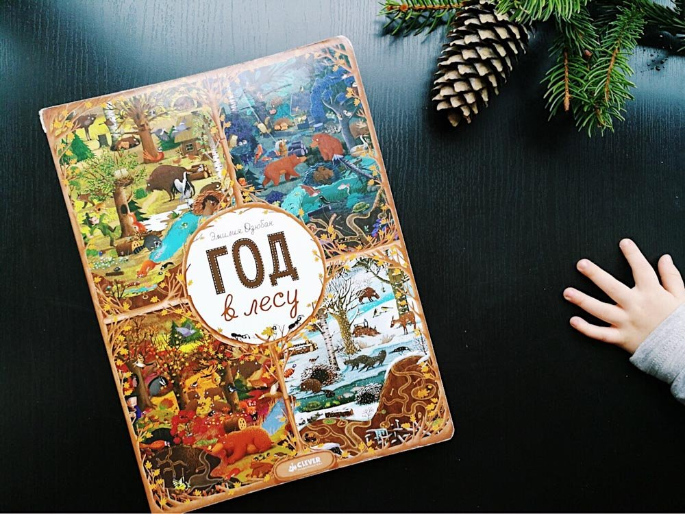Виммельбух. «Год в лесу». Эмилия Дзюбак. Издательство «Клевер Медиа Групп»